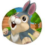 宾尼兔大逃生