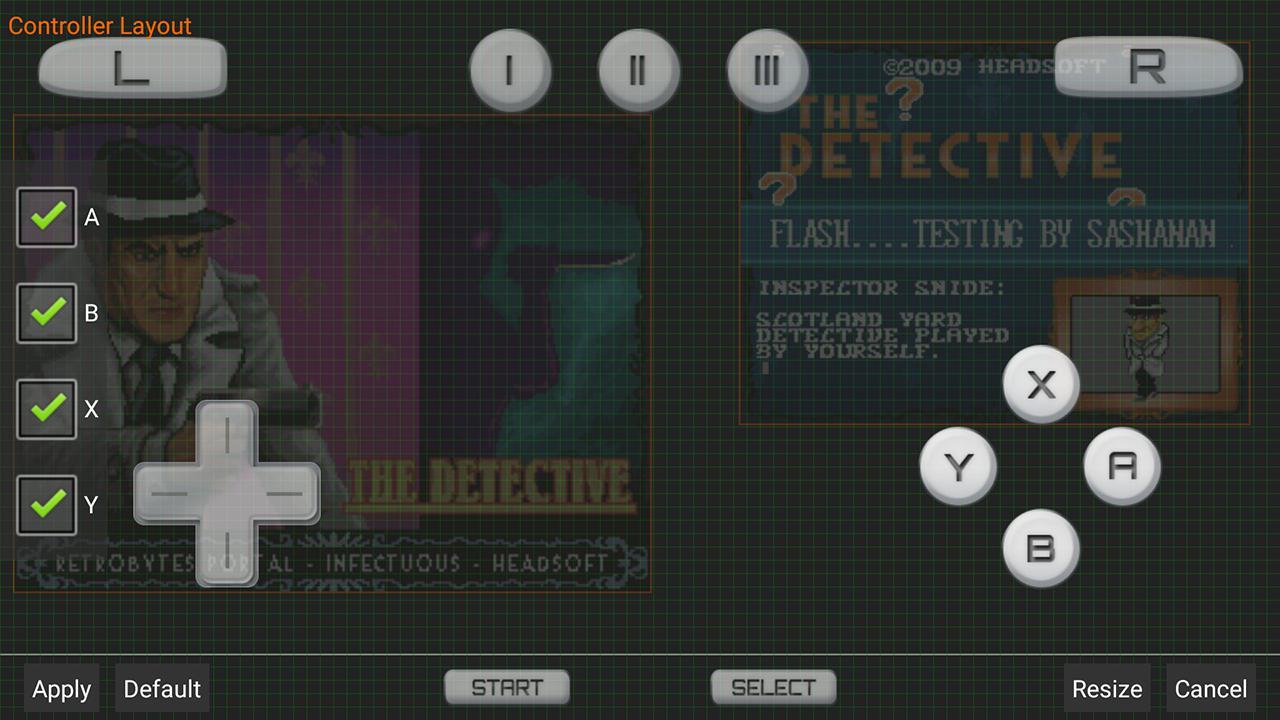 DraStic DS Emulator 游戏截图5