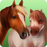 马的世界 - 我的骑乘马:有马儿作伴的游戏
