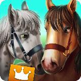 Horse Hotel 高级套餐 - 照顾马儿们