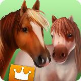 马的世界 - 高级套餐——有马儿作伴的游戏