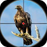 沙漠鸟类狙击手射击 - 鸟类狩猎2019