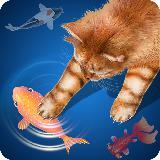 猫 - 渔夫
