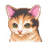 Cat Care Virtual Pet Adfree