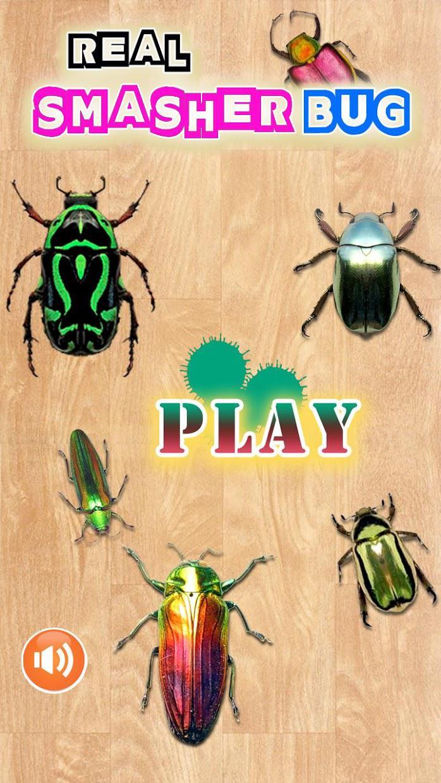 Bug Smasher 2016 游戏截图1