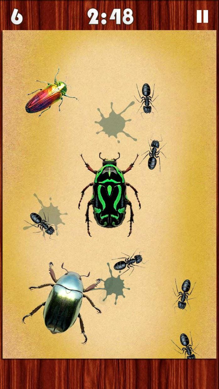 Bug Smasher 2016 游戏截图2