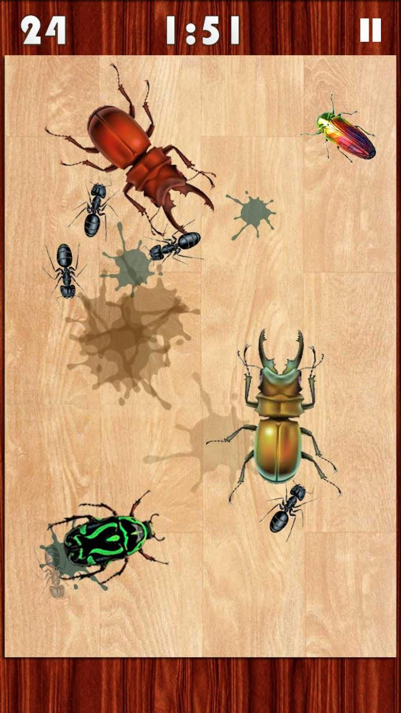Bug Smasher 2016 游戏截图3