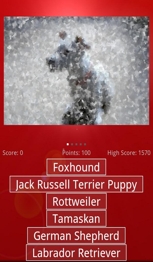 Dog & Puppy Quiz 游戏截图1