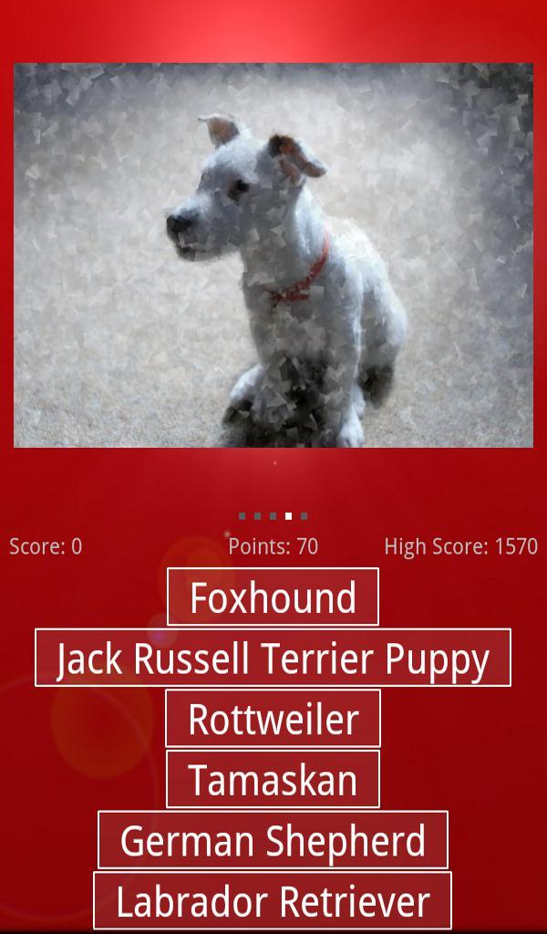 Dog & Puppy Quiz 游戏截图3
