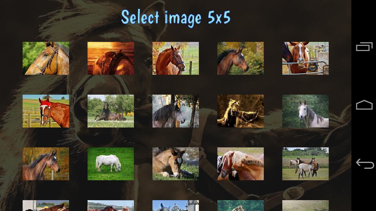 Tile Puzzles · Horses 游戏截图1