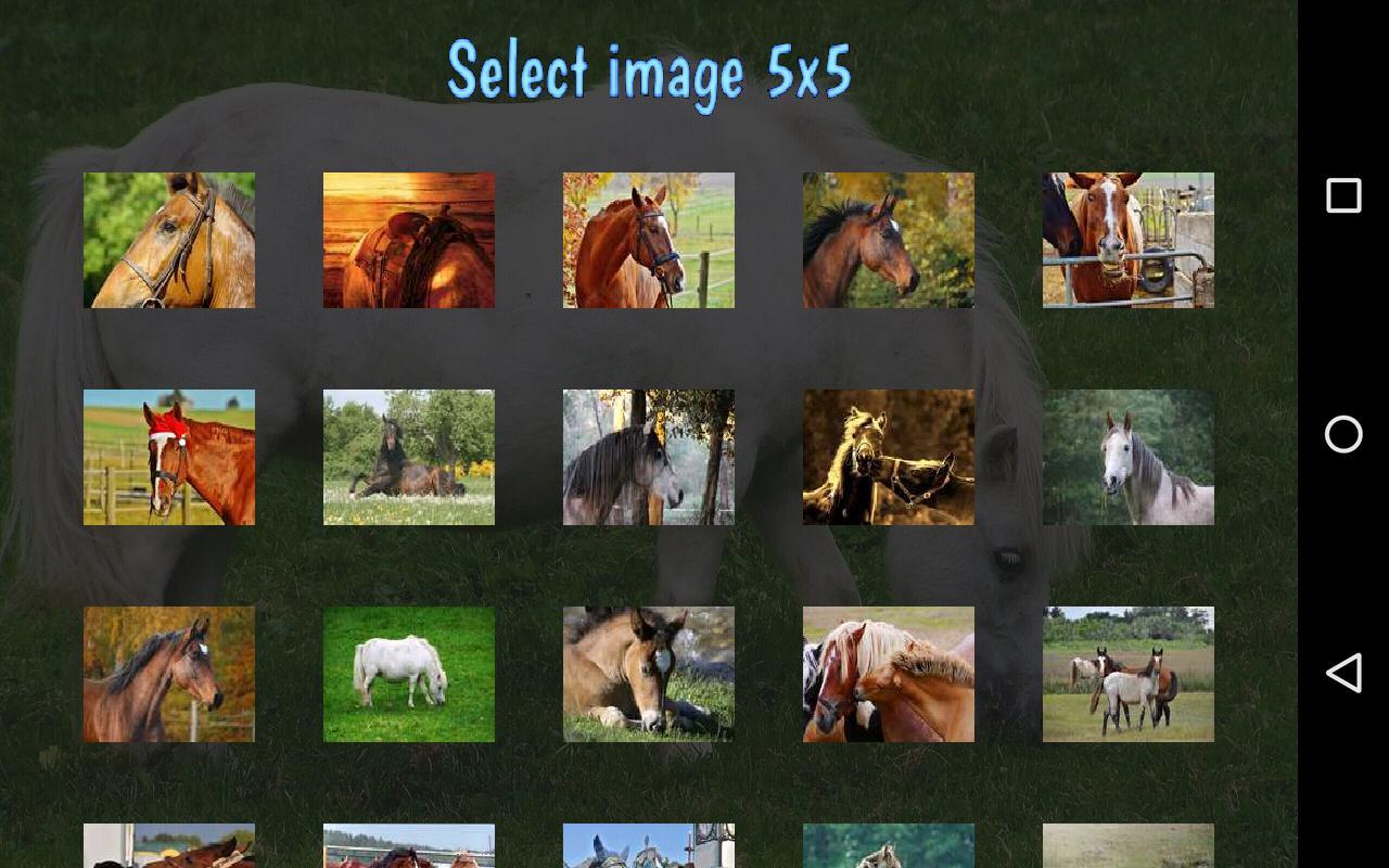 Tile Puzzles · Horses 游戏截图5