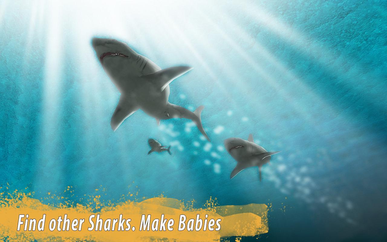 鲨鱼家族 游戏截图2