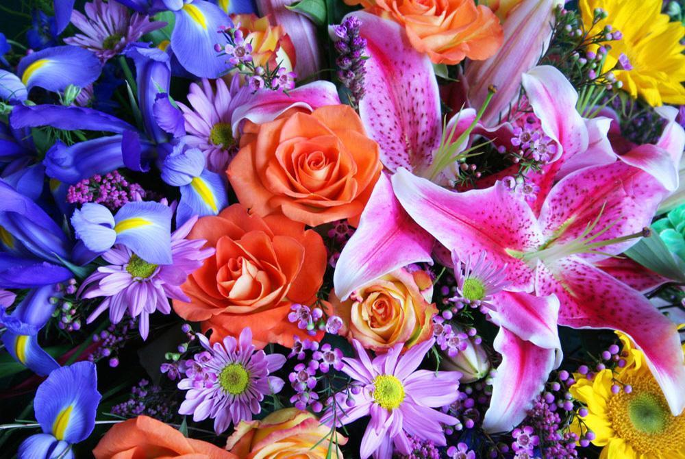 盛开的玫瑰花拼图 游戏截图1
