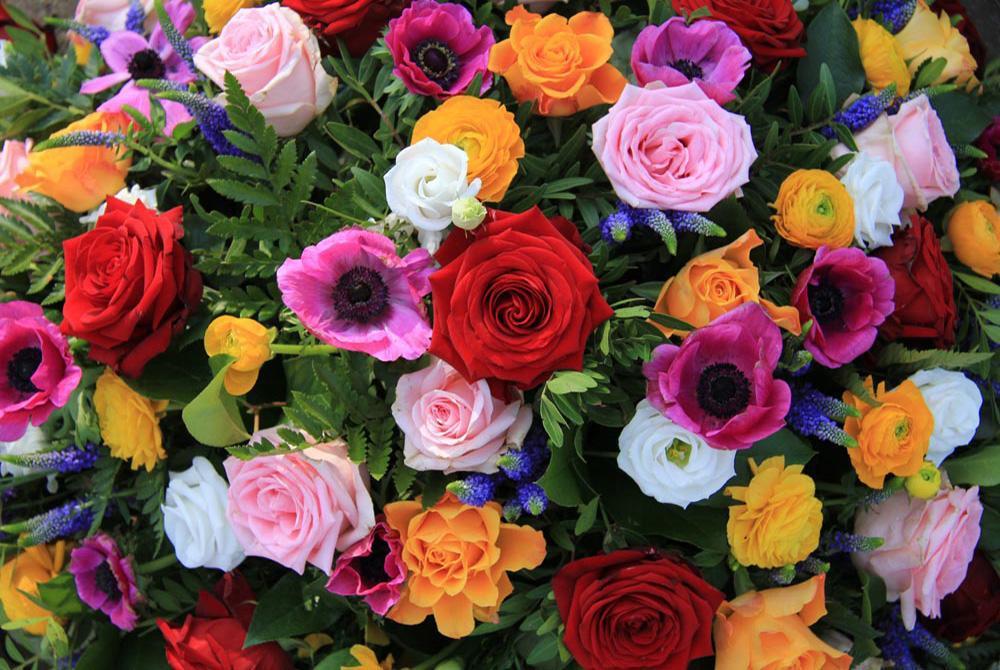 盛开的玫瑰花拼图 游戏截图2