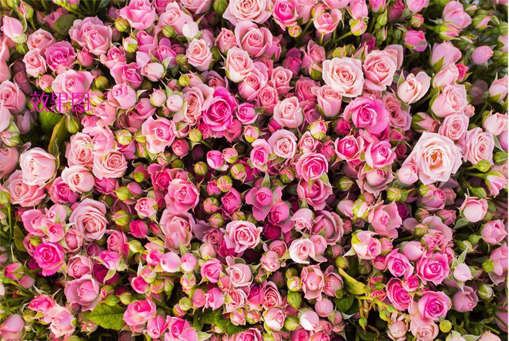 盛开的玫瑰花拼图 游戏截图4