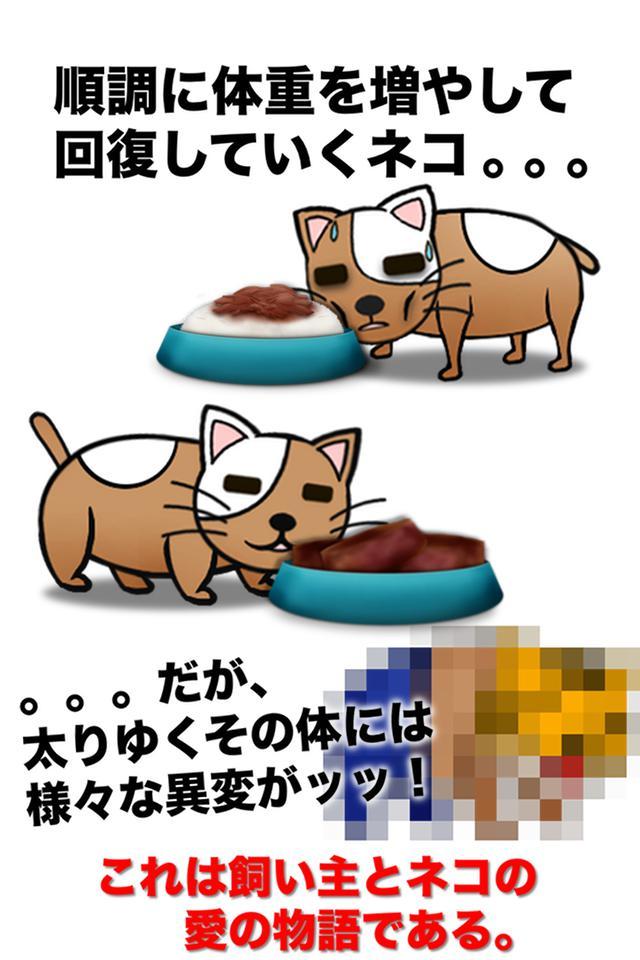 俺のデブねこ育成物语 游戏截图4