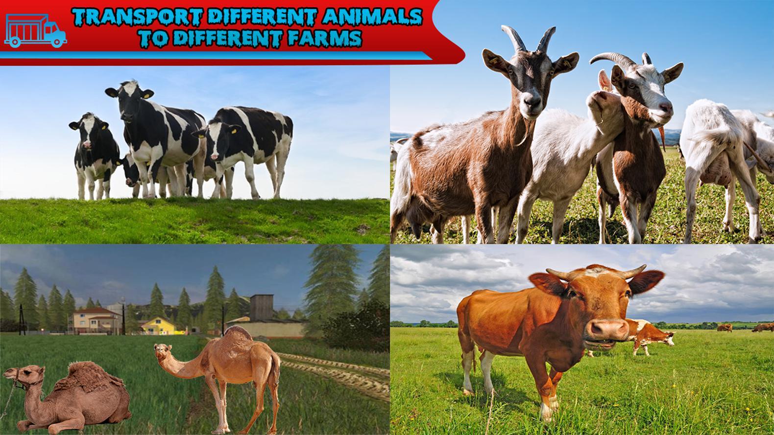 丛林农场动物运输 游戏截图3