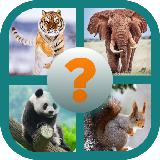 Guess The Animal - Quiz
