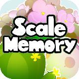 Scale Memory