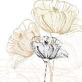 实用养花手册-家庭养花自学指南,花卉多肉植物种植方法,新手养花知识实用指南