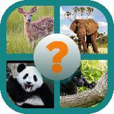 Name The Animal App