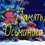 Память осьминога