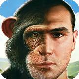 You or a monkey