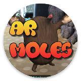 AR Whack-a-mole