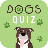 Dogs Quiz - Guess The Dog Breeds