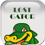 Lost Gator