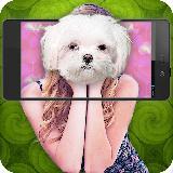 What dog am I simulator