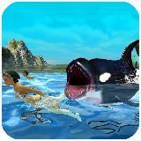 饥饿的蓝鲸攻击模拟器