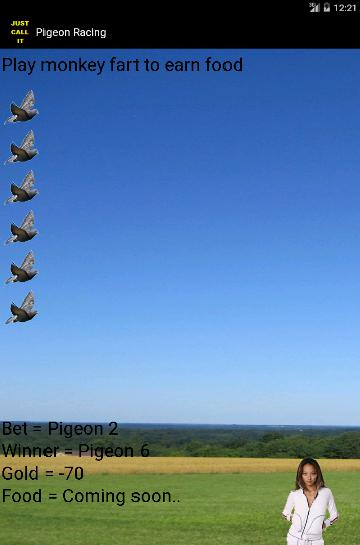 Pigeon Racing 游戏截图3