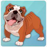 Bulldog Pet Dog 3D
