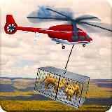 农场 动物 海 运输