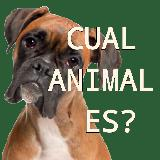 ¿Cuál Animal es?