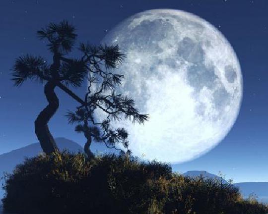 月圆之夜的剧情 带给你全新的梦境模式