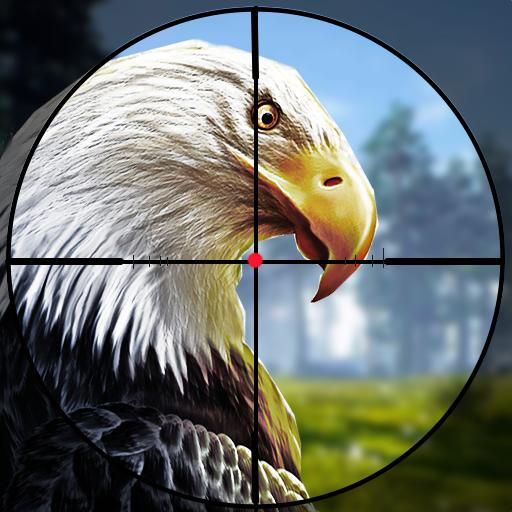 鸟狩猎挑战2019