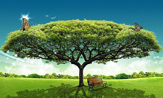 王国纪元大树研发攻略技巧,带你了解大树的玩法!