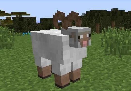 我的世界羊吃什么食物,动物食物解析大全