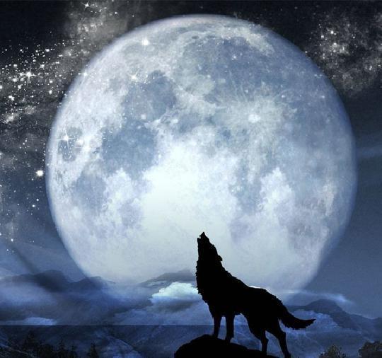 月圆之夜是什么时候上线的?月圆之夜狼人解锁条件是什么