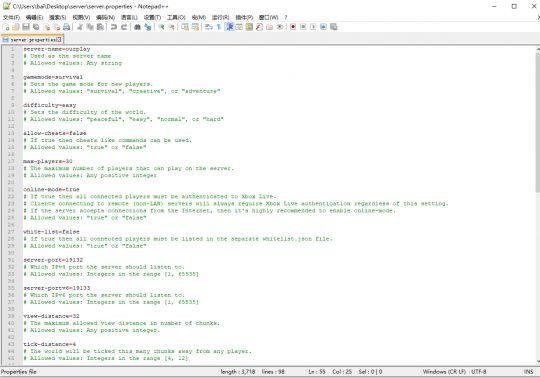 最新手把手教程,Minecraft基岩版(手机版、便携版、PE版)开服指南 图片9