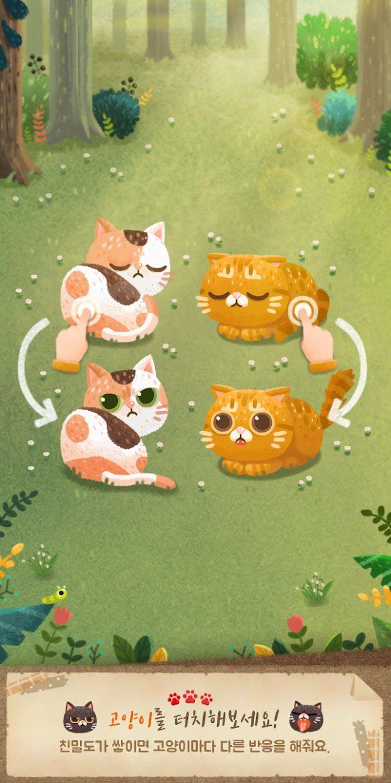 猫和秘密之森 游戏截图4