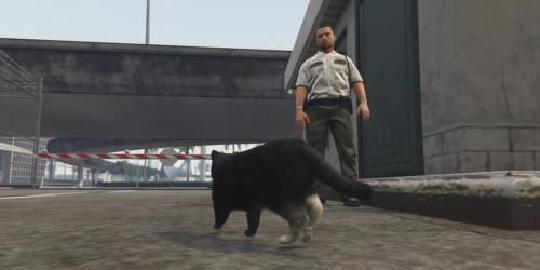 侠盗猎车手5宠物狗可以养吗?怎么和宠物狗玩?