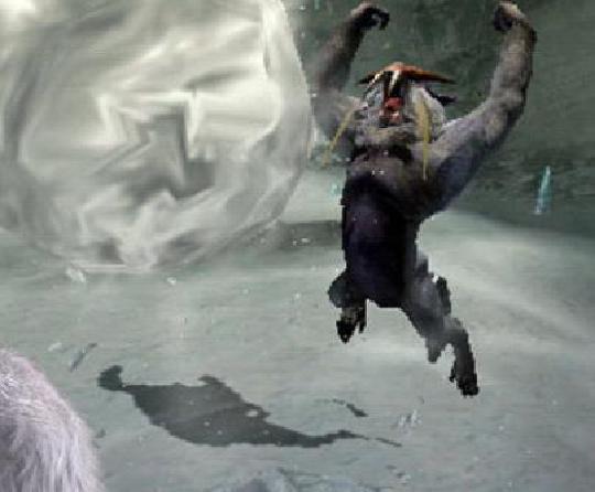 怪物猎人物语白海龙蛋位置在哪里?白海龙蛋位置介绍