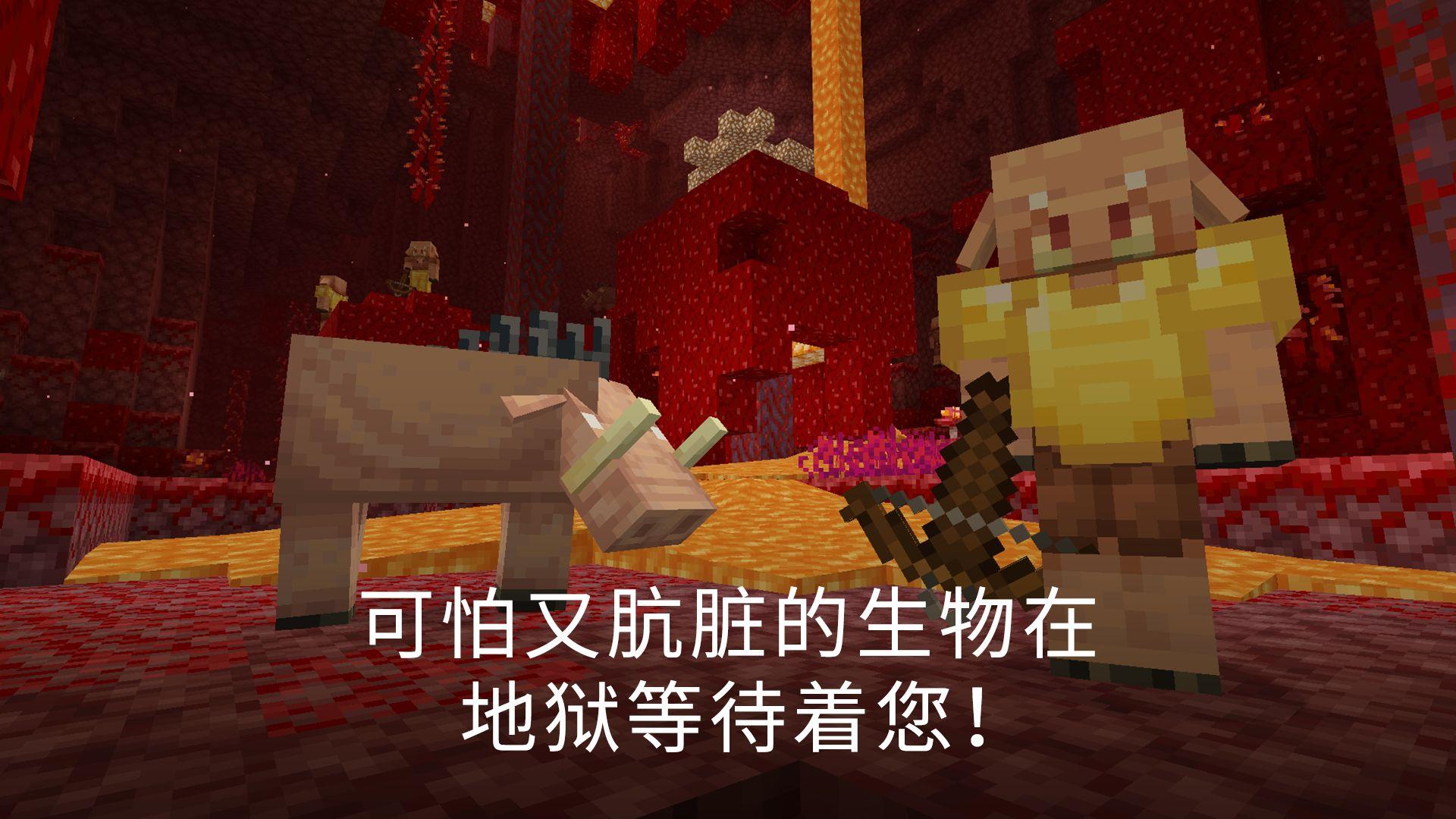 我的世界(国际服 Minecraft) 游戏截图5