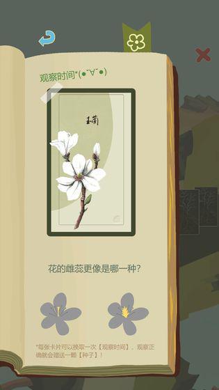 老农种树 游戏截图5